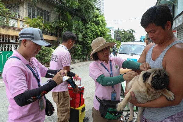 Makati Veterinary Services Office house-to-house anti-rabies vaccine operation / Makati PIO