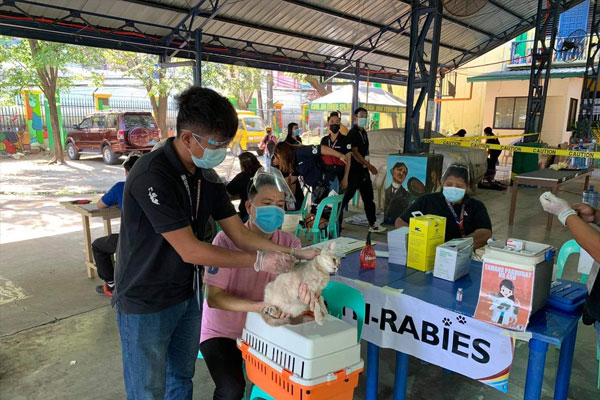 Photo courtesy of: Quezon City Veterinary Department