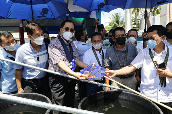 The Bureau of Fisheries and Aquatic Resources (BFAR) expands its number of seafood hatcheries in the country. Along with the help from the private sector, these initiatives of the Department of Agriculture-BFAR will make the government's goal of overcoming the country's deficit in fisheries. (DA Comms Group)