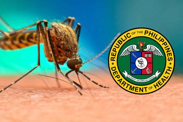 Para%uFFFDaque dengue outbreak