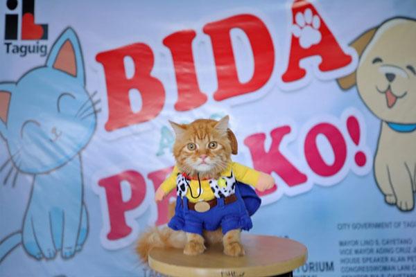 Bida Ang Pet Ko Event / Taguig PIO